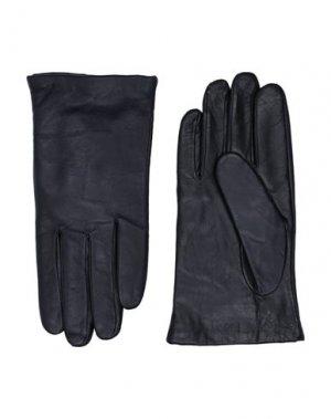 Перчатки CAVALLI CLASS. Цвет: темно-синий
