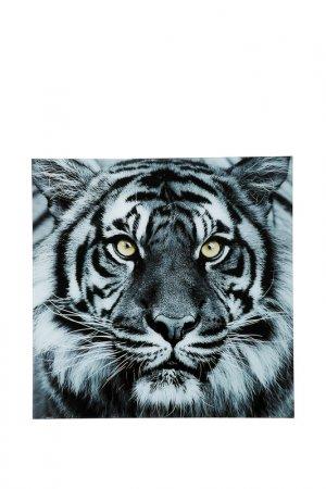 Картина Face Tiger Kare. Цвет: серый
