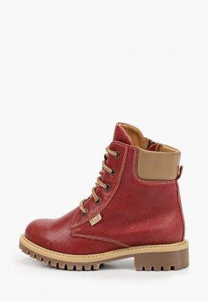 Ботинки Ralf Ringer ASPEN-D. Цвет: бордовый