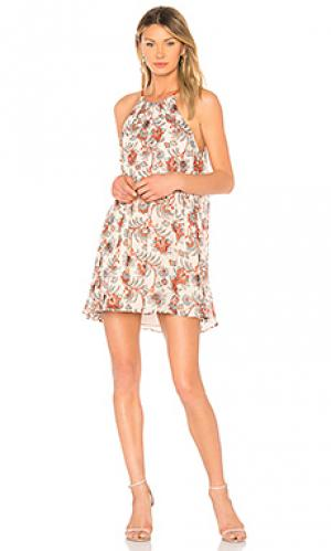 Платье alissa BB Dakota. Цвет: беж