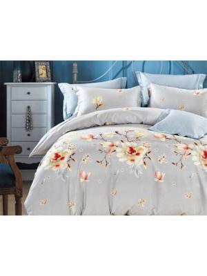 Постельное белье ЕВРО Butterfly. Цвет: коричневый, бежевый, голубой