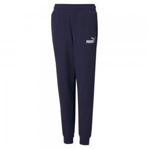 Детские штаны Essentials Logo Youth Sweatpants PUMA. Цвет: синий