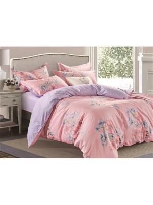 Постельное  белье евро Butterfly. Цвет: фиолетовый, бежевый, розовый