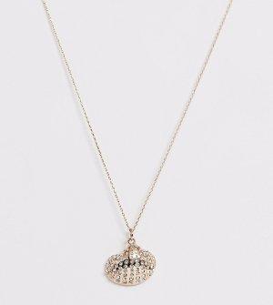 Золотистое ожерелье с подвеской-ракушкой и стразами -Золотой Accessorize