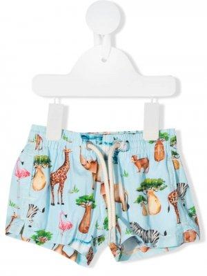 Плавки-шорты с принтом Mc2 Saint Barth Kids. Цвет: синий