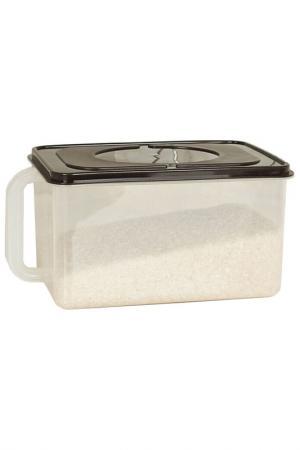 Контейнер для холодильника HOMSU. Цвет: кофейный