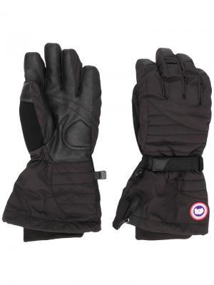 Перчатки Artic Canada Goose. Цвет: черный