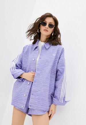 Рубашка adidas Originals JACKET. Цвет: фиолетовый