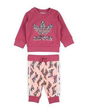 Комплект для малыша ADIDAS ORIGINALS. Цвет: пурпурный