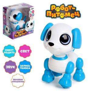 Робот-собака IQ BOT