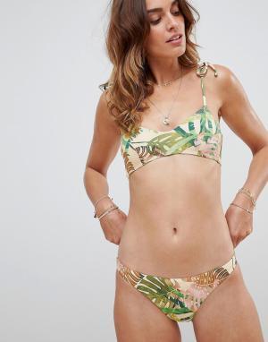 Плавки бикини с пальмовым принтом Luciana-Мульти Vitamin A