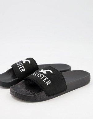 Черные шлепанцы с логотипом в виде чайки -Черный цвет Hollister