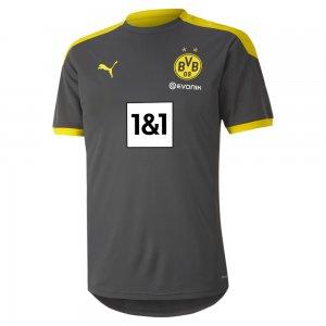 Футболка BVB Training Jersey PUMA. Цвет: серый
