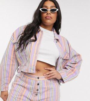 Джинсовая куртка от комплекта в полоску -Мульти Missguided Plus