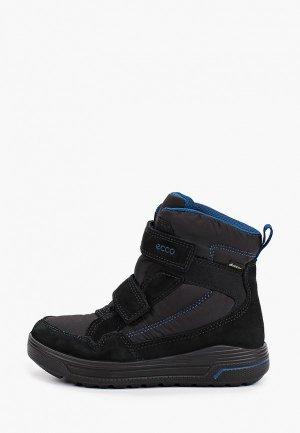 Ботинки Ecco URBAN SNOWBOARDER. Цвет: черный