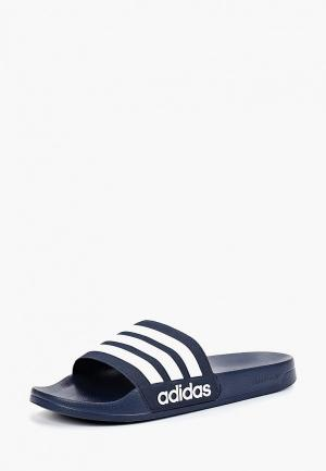 Сланцы adidas ADILETTE SHOWER. Цвет: синий