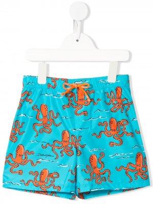 Плавки-шорты с принтом Octopus Dolce & Gabbana Kids. Цвет: синий