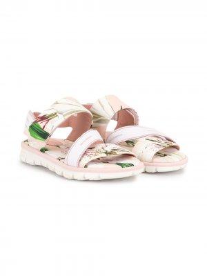 Сандалии с цветочным принтом Dolce & Gabbana Kids. Цвет: белый