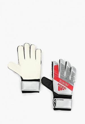 Перчатки вратарские adidas PRED TTRN. Цвет: серый