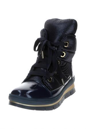 Ботинки Jog Dog. Цвет: синий экстралюкс