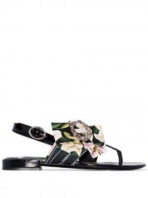 Декорированные сандалии с лентами Dolce & Gabbana. Цвет: черный