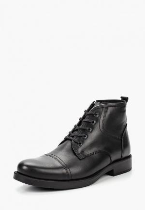 Ботинки Pierre Cardin. Цвет: черный
