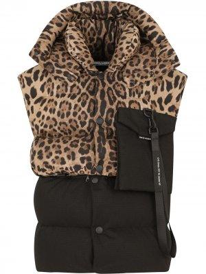 Дутый жилет с капюшоном и леопардовым принтом Dolce & Gabbana. Цвет: черный