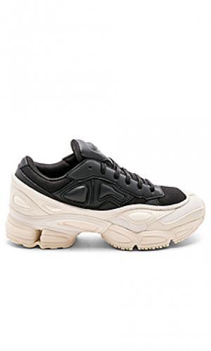 Кроссовки ozweego adidas by Raf Simons. Цвет: black & white