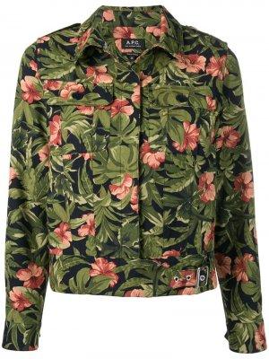Куртка-рубашка с цветочным принтом A.P.C.. Цвет: синий