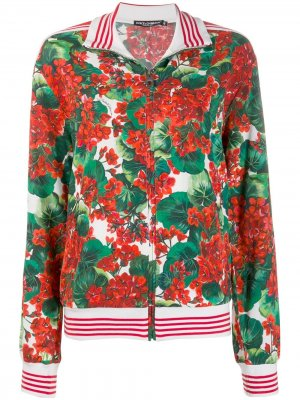 Куртка-бомбер с цветочным принтом Dolce & Gabbana. Цвет: зеленый
