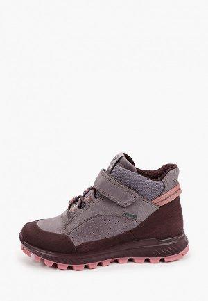 Ботинки Ecco EXOSTRIKE KIDS. Цвет: фиолетовый