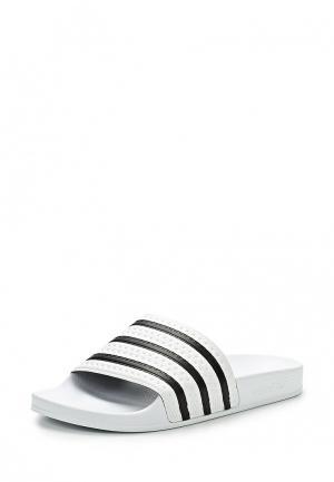 Сланцы adidas Originals. Цвет: белый
