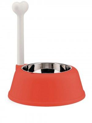 Миска для собаки Lupita Alessi. Цвет: оранжевый