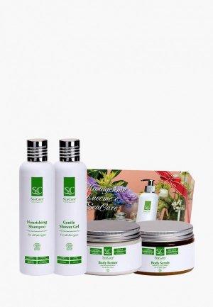 Набор для тела и волос SeaCare органический  СПА №11, масло 250 мл + скраб шампунь гель душа. Цвет: зеленый