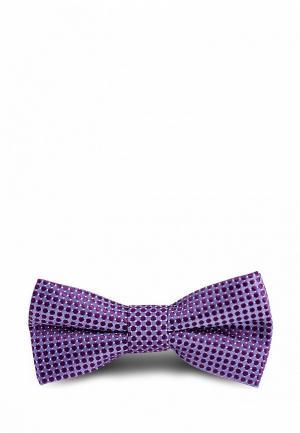 Бабочка Stenser. Цвет: фиолетовый