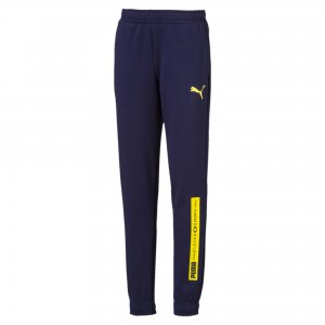 Детские штаны Active Sports Sweat Pants PUMA. Цвет: синий