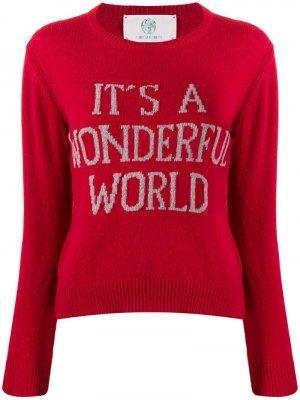 Джемпер Its A Wonderful World Alberta Ferretti