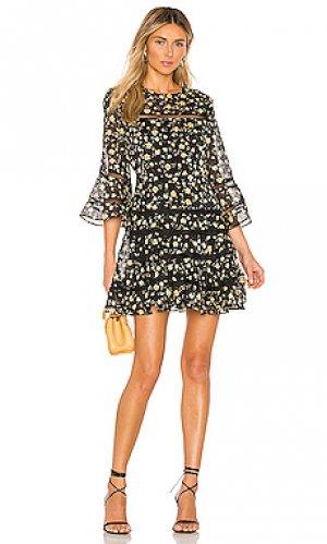 Мини платье poppy Bardot. Цвет: черный