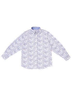 Рубашка хлопковая с принтом PAUL & SHARK