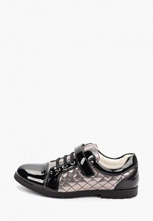Ботинки T.Taccardi. Цвет: разноцветный