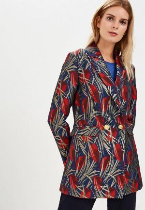 Пиджак Silvian Heach. Цвет: разноцветный