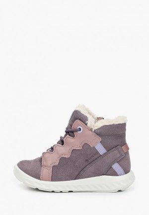 Ботинки Ecco SP.1 LITE INFANT. Цвет: серый