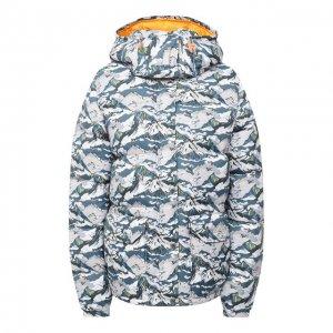 Пуховая куртка The North Face. Цвет: серый