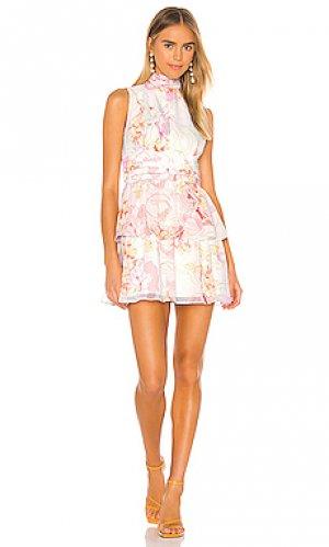 Мини платье samira Amanda Uprichard. Цвет: белый