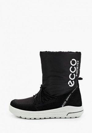 Дутики Ecco URBAN SNOWBOARDER. Цвет: черный