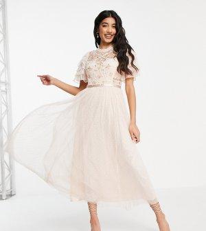 Кремовое платье мидакси в балетном стиле с кружевной вышивкой Isadora-Белый Needle & Thread