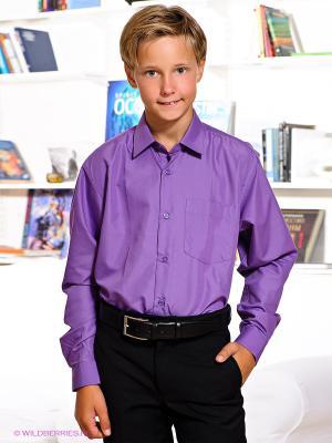Рубашка Davani. Цвет: фиолетовый