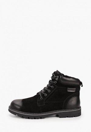 Ботинки Alessio Nesca DSR20AW-9. Цвет: черный