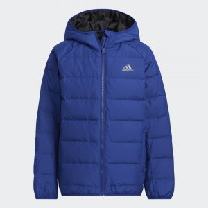 Куртка Frosty Winter Sportswear adidas. Цвет: черный