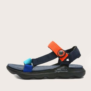 Контрастные спортивные сандалии для мальчиков SHEIN. Цвет: чёрный